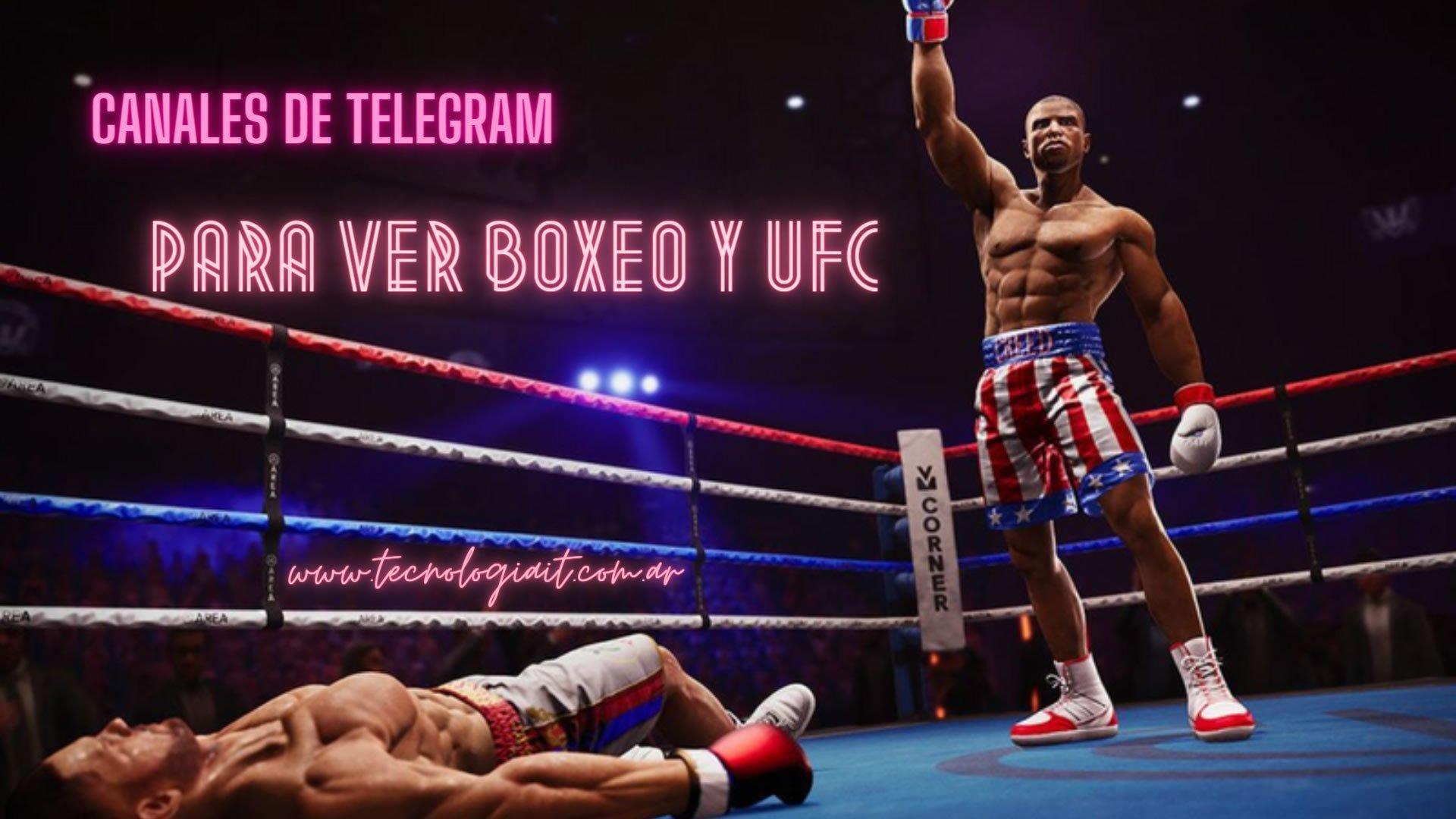Canales de Telegram para ver Peleas de Boxeo y UFC por Streaming en Vivo Online